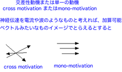 Cross_motivation_2
