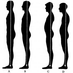 measuring_posture